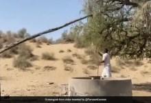 कुएं से पानी भरने के लिए गांव के शख्स ने किया गजब का जुगाड़, लोगों ने कहा