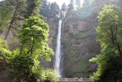 The Multnomah Falls are the second-largest waterfall in the United States.