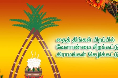 Pongal wishes in tamil pictures wallpaper references best pongal wishes in tamil pic image collection m4hsunfo