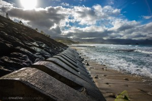 PacificPerspective-14