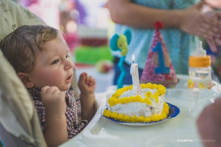 LIFE Zachariahs First Birthday-14