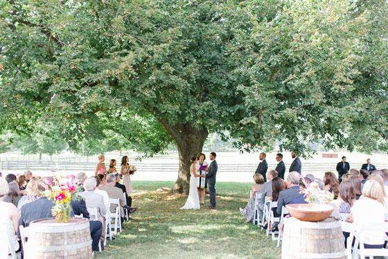 Idyllic Wedding Ceremony Spaces at Springton Manor Farm