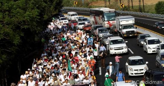 marcha-nacional-por-la-paz_5692572000_o
