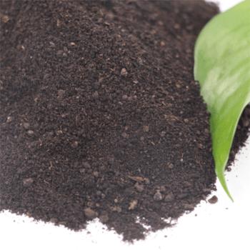 Market-price-chicken-manure-organic-fertilizer-buyers.png_350x350