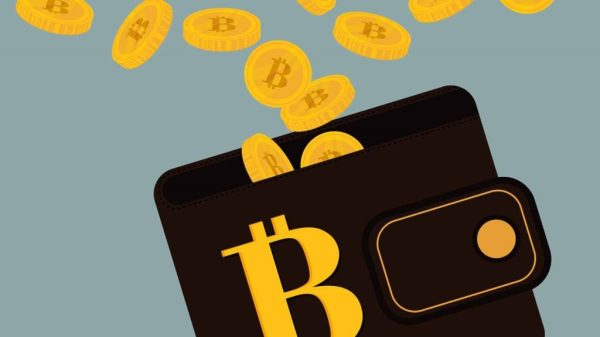 Monederos de criptomonedas Lista