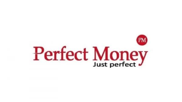 Perfect Money Seguridad