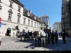 Vienna6