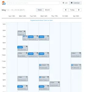 Calendar of automated social media posts in Buffer
