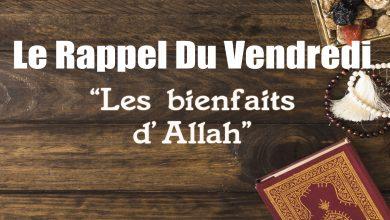 Photo of Rappel du Vendredi : Les bienfaits d'Allah