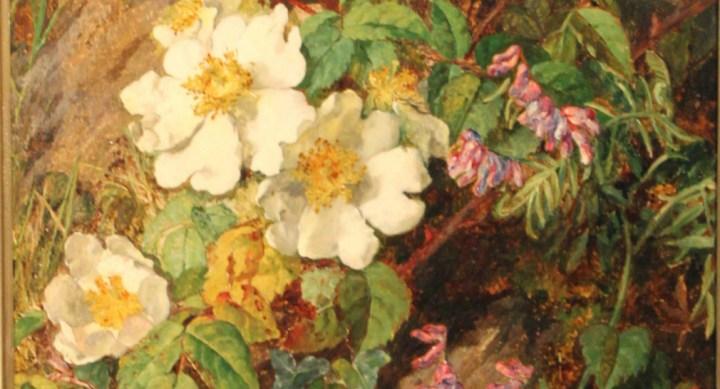 Wild Flowers – Martha Darlay Mutrie