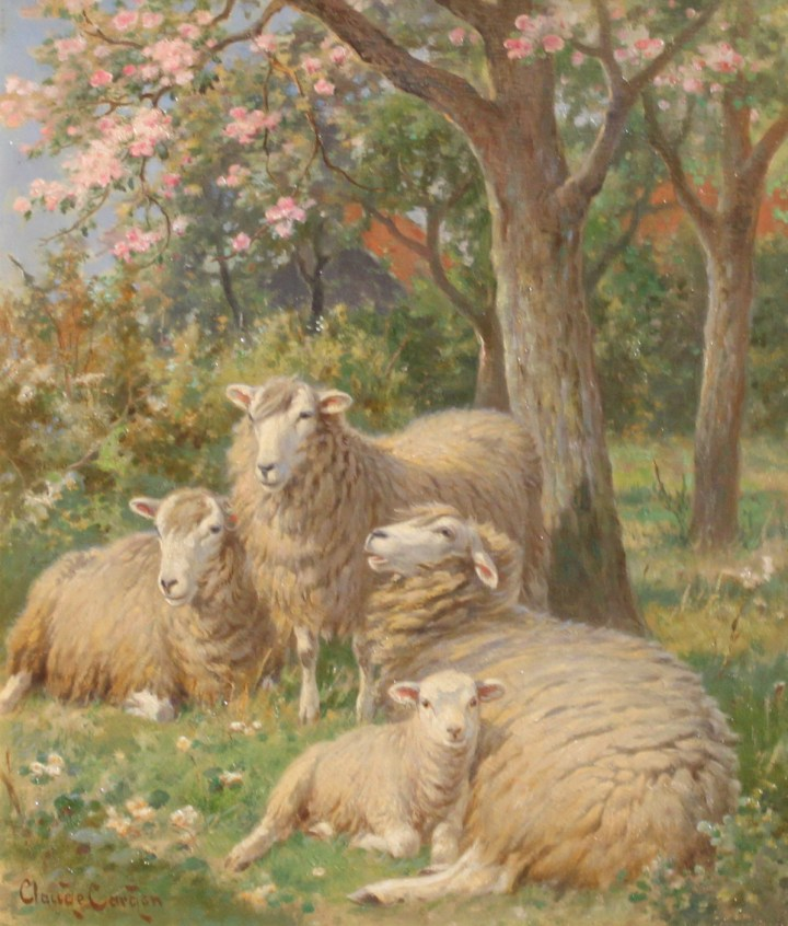 Sheep in an orchard – claude cardon