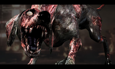 horrible chien zombifié
