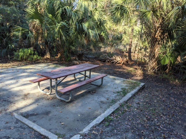 Picnic table at Skidaway Island State Park campground site