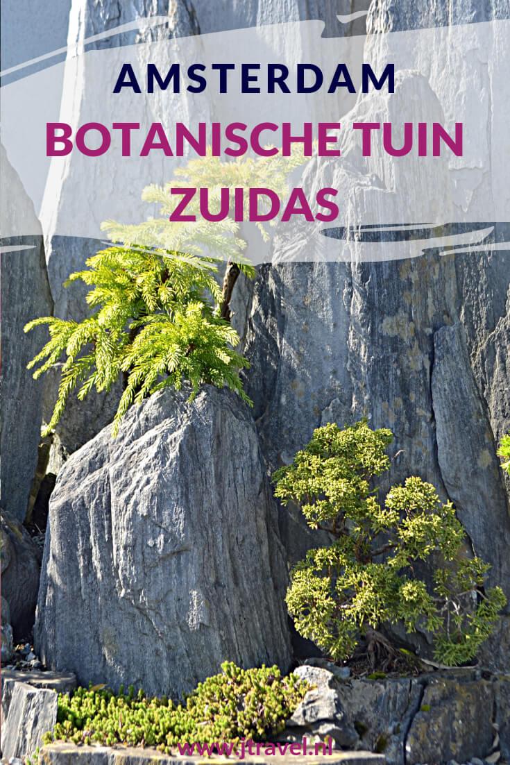 Midden in de hectiek van Amsterdam-Zuid ligt de Botanische Tuin Zuidas. Mooi, rustig en de toegang is gratis! Meer hierover lees je op mijn website, lees je mee? #botanischetuinzuidas #amsterdamzuid #amsterdam #botanischetuin #jtravel #jtravelblog