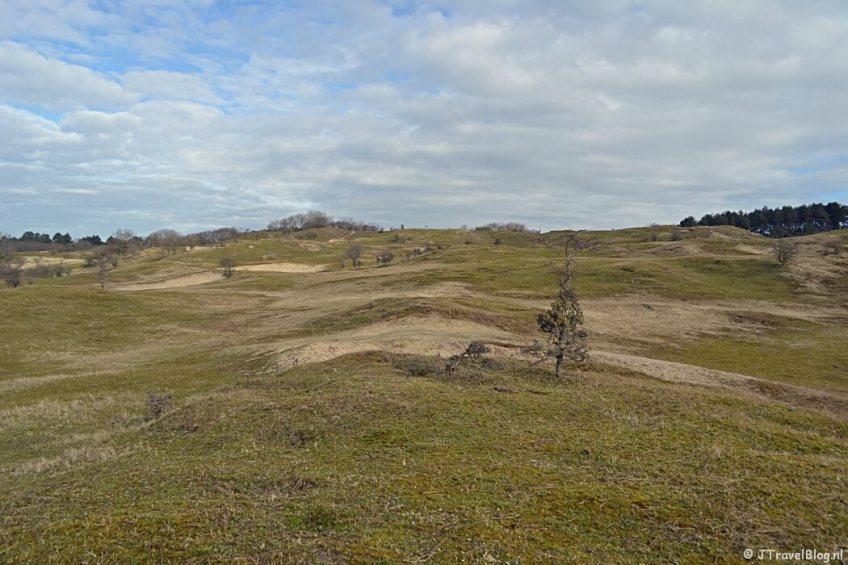 Het gebied in de buurt van het Museumduin en de Pollenberg tijdens de bunkerroute in de Amsterdamse Waterleidingduinen