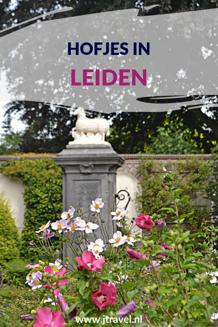 Tijdens je wandeling door Leiden zijn er vele hofjes te bezoeken. Welke dat zijn lees je op mijn website. #leiden #wandeling #hofjes