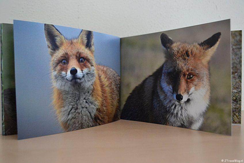 De inhoud van mijn Fotoboek M van Smartphoto.nl