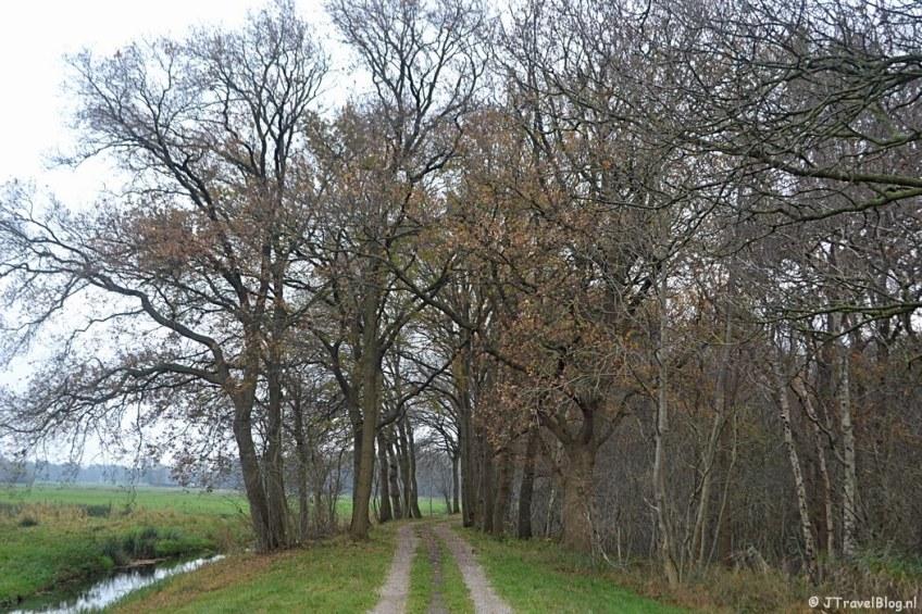 Het pad langs het Naardermeer tijdens de 4e etappe van het Westerborkpad