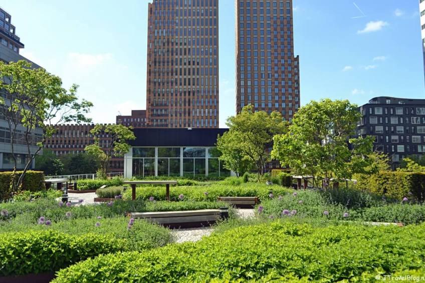 Het dakterras vanaf de CIRCL aan Gustav Mahlerplein tijdens mijn Wandeling Amsterdamse Zuidas