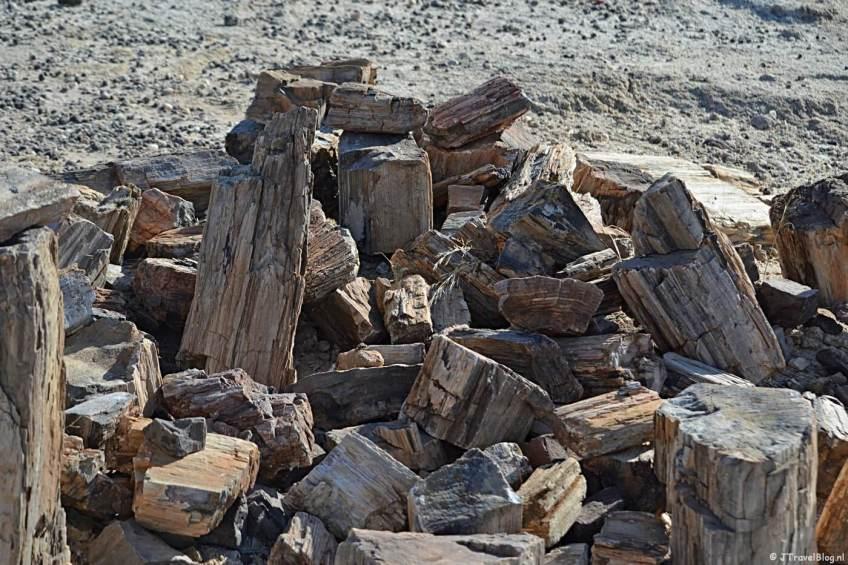 Bijzonder natuurfenomeen in Namibië: Petrified Forest