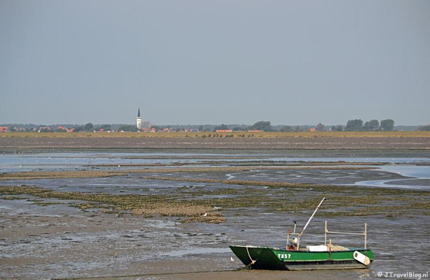 Natuurgebied Mokbaai op Texel