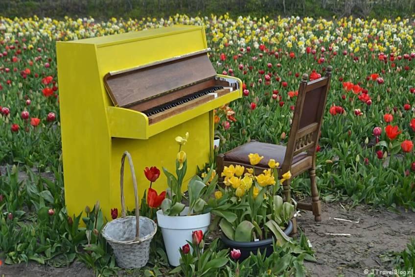 The Tulip Barn in Hillegom/Bollenstreek