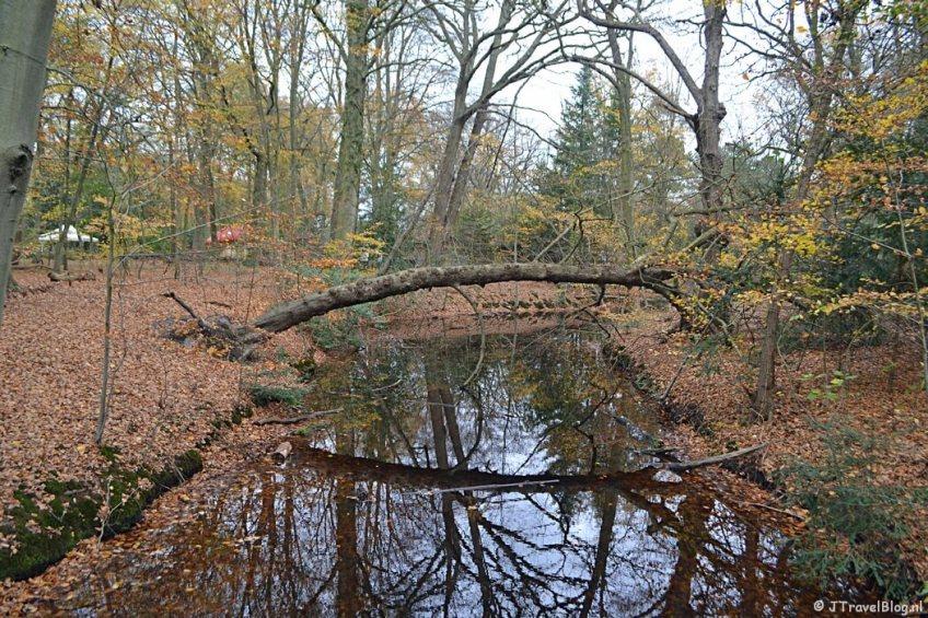 Vanaf de brug bij de Kinderboerderij in de herfst in Wandelbos Groenendaal in Heemstede