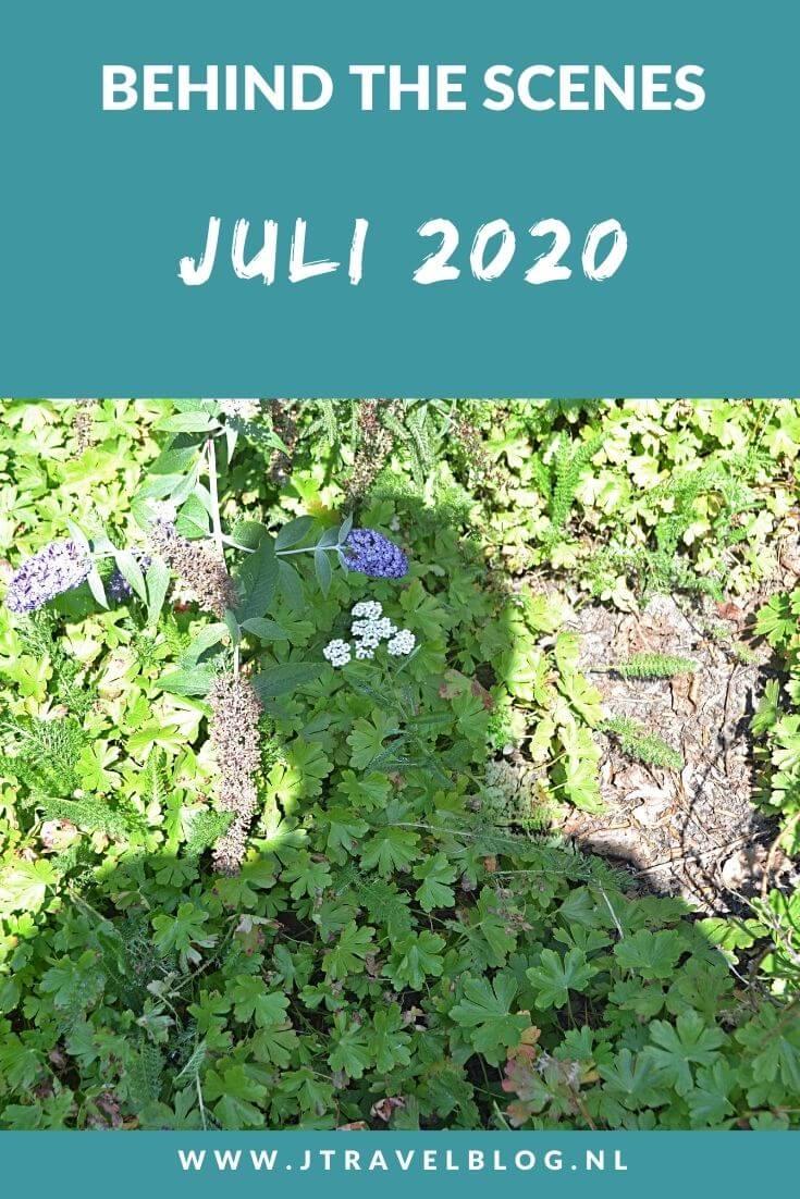 In juli 2020 begon ik aan mijn project het Westerborkpad lopen, bezocht ik de Zaanse Schans, maakte ik een wandeling in de Amsterdamse Waterleidingduinen en ik bezocht de 'Wezens van de Koepelkathedraal' in Haarlem. Meer hier over lees je in dit maandoverzicht. #maandoverzicht #amsterdamsewaterleidingduinen #juli2020 #westerborkpad #zaanseschans #koepelkathedraal #amsterdam #haarlem #jtravel #jtravelblog
