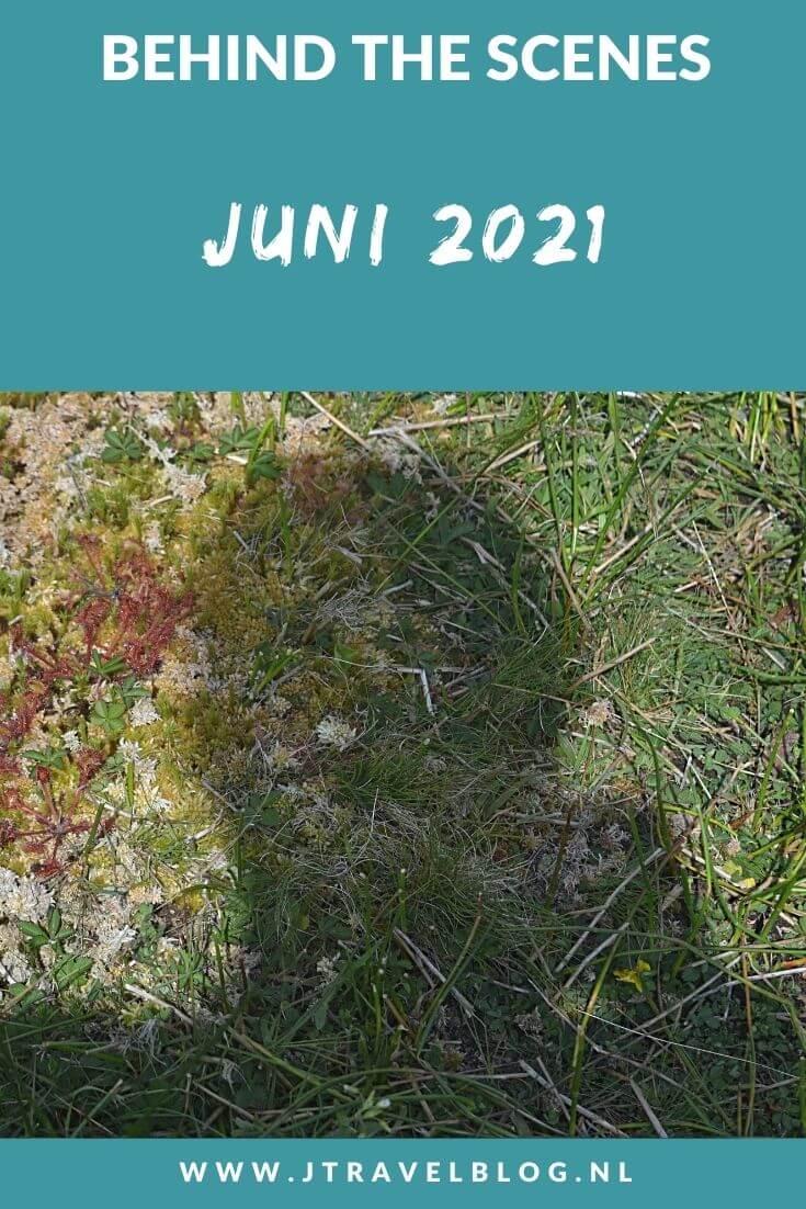 In juni 2021 liep ik 2 etappes van het Westerborkpad van Station Naarden-Bussum via Station Hilversum naar Station Hilversum Sportpark en ik maakte een mooie wandeling in de Amsterdamse Waterleidingduinen. Meer hier over lees je in dit maandoverzicht. #maandoverzicht #juni2021 #westerborkpad #amsterdamsewaterleidingduinen #wandelen #jtravel #jtravelblog