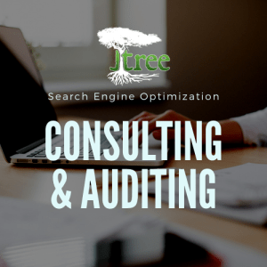 SEO Consulting & Auditing
