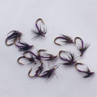 dozen-purple-western