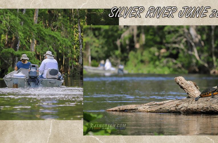 KayakN' 6-15-2020 Silver River