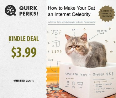 FEB-quirkperk-catcelebrity