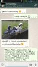 wpid screenshot 2014 10 11 23 33 391 Salah Salah Satu Testimoni dari Pelanggan Kami di Riau Tentang Keberhasilanya Menetaskan Telur Ayam Hias yang Kami Kirimkan Jual Ayam Hias HP : 08564 77 23 888   BERKUALITAS DAN TERPERCAYA Salah Salah Satu Testimoni dari Pelanggan Kami di Riau Tentang Keberhasilanya Menetaskan Telur Ayam Hias yang Kami Kirimkan Salah Salah Satu Testimoni dari Pelanggan Kami di Riau Tentang Keberhasilanya Menetaskan Telur Ayam Hias yang Kami Kirimkan
