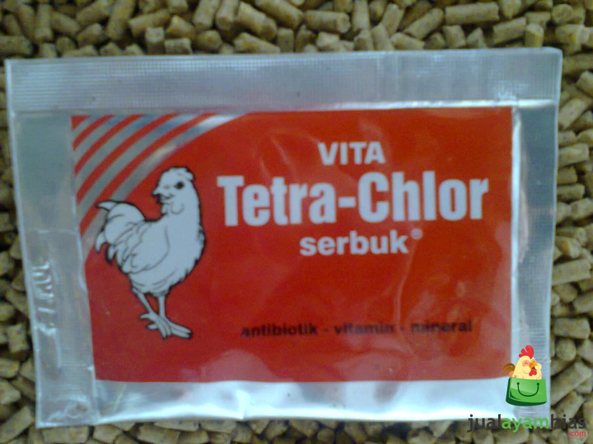 Mengatasi Beberapa Penyakit Ayam dengan Kapsul Tetra Chlor