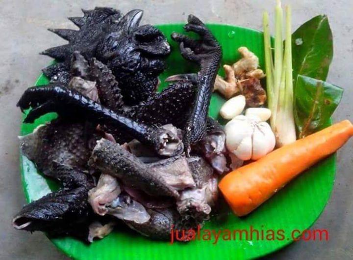 Khasiat daging ayam cemani