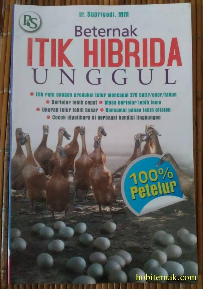 Beternak Itik Hibrida Unggul Image