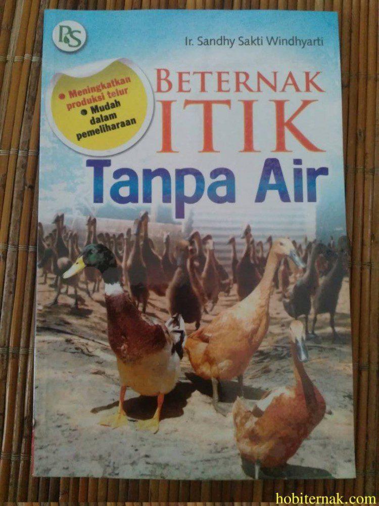 Beternak Itik Tanpa Air Image