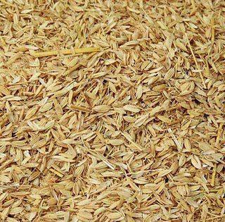 Sekam Padi berasal dari kulit padi yang sudah terkelupas