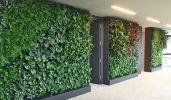 vertical-garden-indoor-jakarta