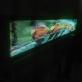 foto videotron 15 [Original Size]