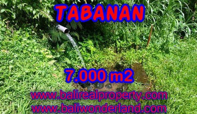 TANAH DIJUAL DI BALI, MURAH DI TABANAN RP 270.000 / M2 – TJTB089 – INVESTASI PROPERTY DI BALI