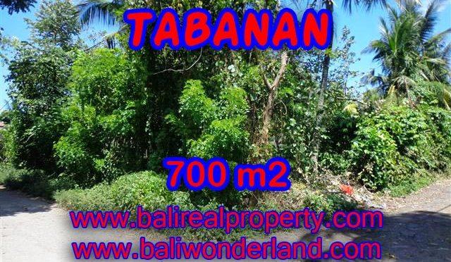 INVESTASI PROPERTI DI BALI - DIJUAL TANAH DI TABANAN BALI CUMA RP 3.800.000 / M2