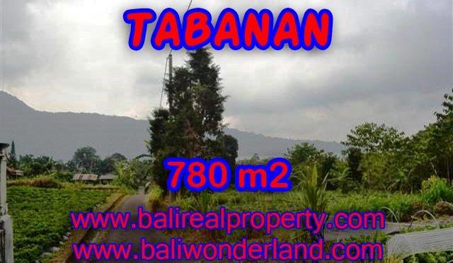 TANAH DIJUAL DI TABANAN MURAH RP 1.250.000 / M2 – TJTB100