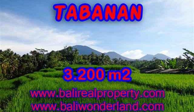 DIJUAL TANAH MURAH DI TABANAN TJTB118 – KESEMPATAN INVESTASI PROPERTY DI BALI