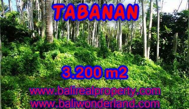 TANAH DI BALI DIJUAL MURAH DI TABANAN CUMA RP 450.000 / M2 - INVESTASI PROPERTY DI BALI