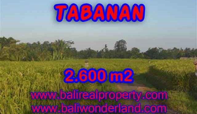JUAL TANAH DI TABANAN BALI MURAH TJTB129