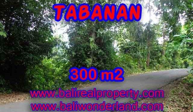 TANAH MURAH DI TABANAN DIJUAL CUMA RP 1.000.000 / M2