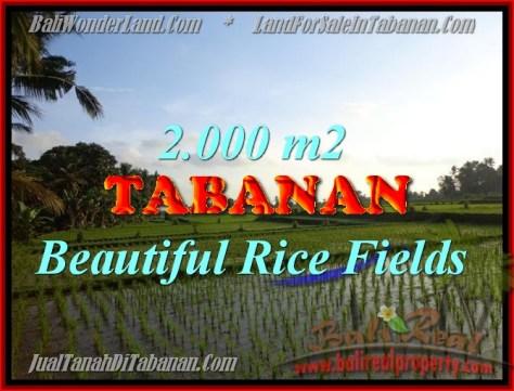 DIJUAL TANAH DI BALI, MURAH DI TABANAN RP 500.000 / M2 - TJTB151
