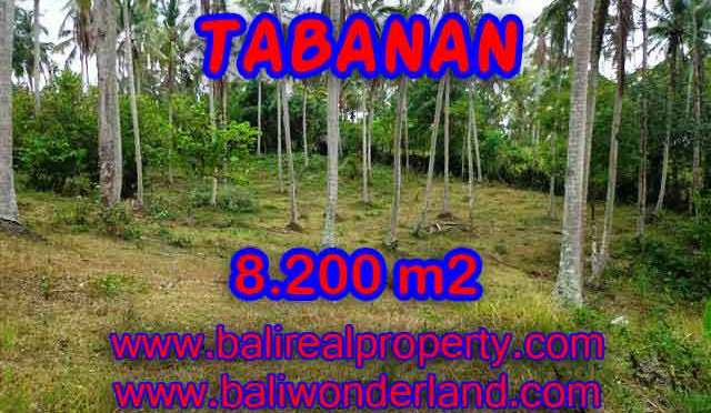 MURAH ! TANAH DI TABANAN BALI RP 520.000 / M2 - TJTB142 - INVESTASI PROPERTY DI BALI